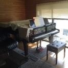 ピアノ教室    個人レッスン