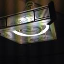 和室 蛍光灯 電気