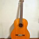 USED◇ MORRIS モーリス クラッシックギター ブラウン ...
