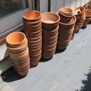 植木鉢各種