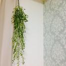 フェイク観葉植物 インテリア 2個セット