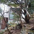 小倉北区の山林(市街化調整区域、建築不可)50坪