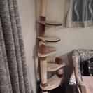 猫タワーあげます。