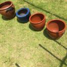 メダカ飼育 陶器