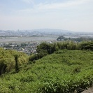 静岡市の穏やかで美しい自然の中で墓地経営!宗教法人様募集!