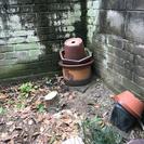 無料 植木鉢です