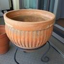 <取引終了>テラコッタ 大型植木鉢 その他