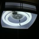 照明器具  電気の傘