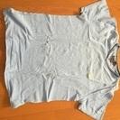 ポロ・ラルフ・ローレン、Tシャツ