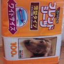 使い捨てペットシーツ 薄型ワイド88枚 犬・猫・小動物用