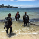 海遊び団「やな笑ばぁ😜」:ダイビングで繋がる遊びのコミュニティ♪