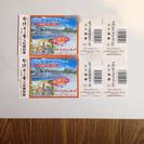 ナガシマスパーランド チケット(プール付)×2枚