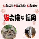 【現在3名様!】〜猫好き・猫の飼い主の夜カフェ交流会〜猫会議@福岡天神