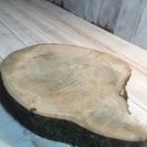 丸太輪切り 堅く重い樹種約22センチ 厚さ3センチ