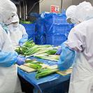 知多市内で製麺工場で具材の盛り付け作業員募集! - 知多市