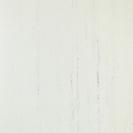 ◆新品◆Pタイル・1ケース50枚