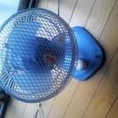 夏の必需品扇風機