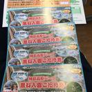 城島高原パーク無料入園招待券