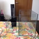 オールガラス 水槽 60㎝と45㎝2点セット