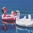 フラミンゴ&スワン浮き輪 子供用