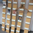 値下げ!壁掛け飾りCDラック5本セット+ポストカード4枚 直島 草...