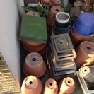 植木鉢いっぱいあります