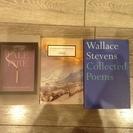 洋書(英語)11冊 modern literature
