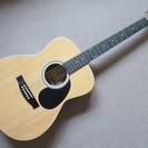 HONEY BEE ハニービー F-15/N アコースティック ギター