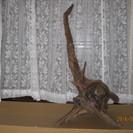 置物 木(根)のオブジェ