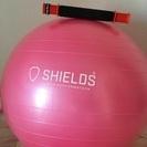 数回使用バランスボールとタイガーテイル筋膜ローラー