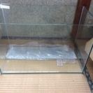 【配達可能】超美品 60cm フレームレスオールガラス水槽