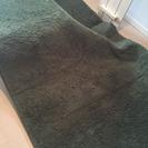 カーキーのカーペット