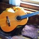 美品 ギター