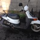 ホンダ トピックプロ50cc