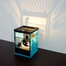9/22 3Dプリンターで幻想的なオリジナルランプシェードをつくろう!