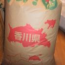 玄米 30k