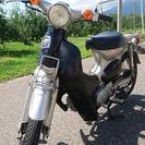 リトルカブ 110cc & 4速ミッション