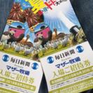 マザー牧場 チケット2枚*期限間近!
