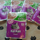 【猫エサ】カルカン15歳からマグロ6袋