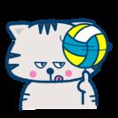 バレーボールをしたくなりました。品川区港区目黒区大田区