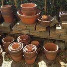 中古鉢が大小60個以上