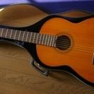 クラッシックギター YAMAHA  C-317