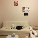 購入2か月のソファーベッド(市販6万相当)0¥で至急処分します!!!★☆