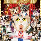 WAHAHA本舗PRESENTS 猫ひろしニッポン公演 《芸歴15...