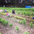 第3回 ユネスコエコパーク三重県大台町で、農業体験&ピクニック!