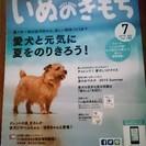 【新品】いぬのきもち 2015年7月号+付録「愛犬おやつケース」