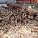 薪になる原木あります