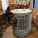 暖房器ご見学キャンペーン!