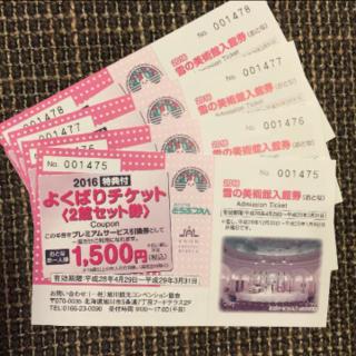雪の美術館 入館無料券 大人 4枚 (北海道 旭川)