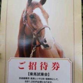 乗馬体験無料招待ペア券 半額